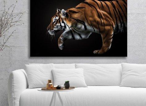 Photo Art - Tiger