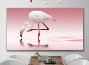 Photo Art - Flamingo