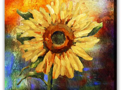 Gul Solros -Sunflower