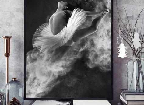 Prints - Swan Lake