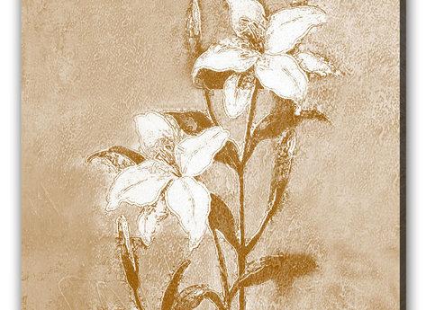 Vit Blommor Tavla -White flower
