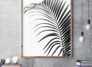 Poster  - Tavla - Palma