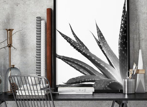 Poster  - Tavla - Cactus
