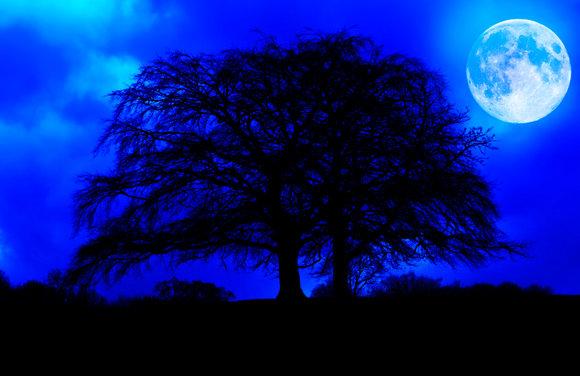 Blå Natt tavla